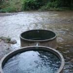 チェンダオ温泉の写真