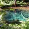 ブアトン滝森林公園〜神様がくれた泉と川
