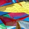 ダライラマ〜ナムギェル寺院録音と祈りの響き
